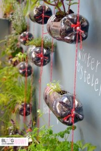 Jardín urbano - botellas